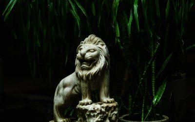 Sobre las creencias y los leones